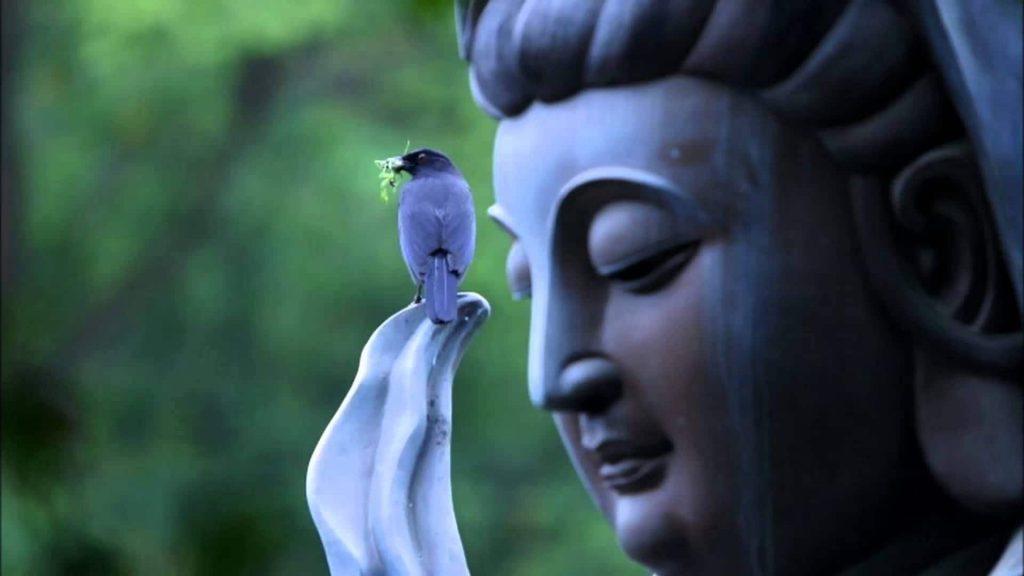 Buddha Artefacts
