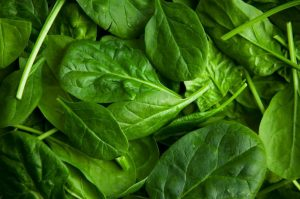 Healthy Vegetable- Spinach