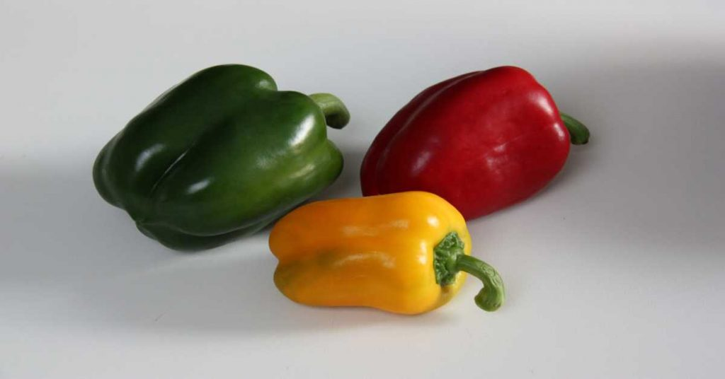 Healthy Herb and Spice- Bell Peppers
