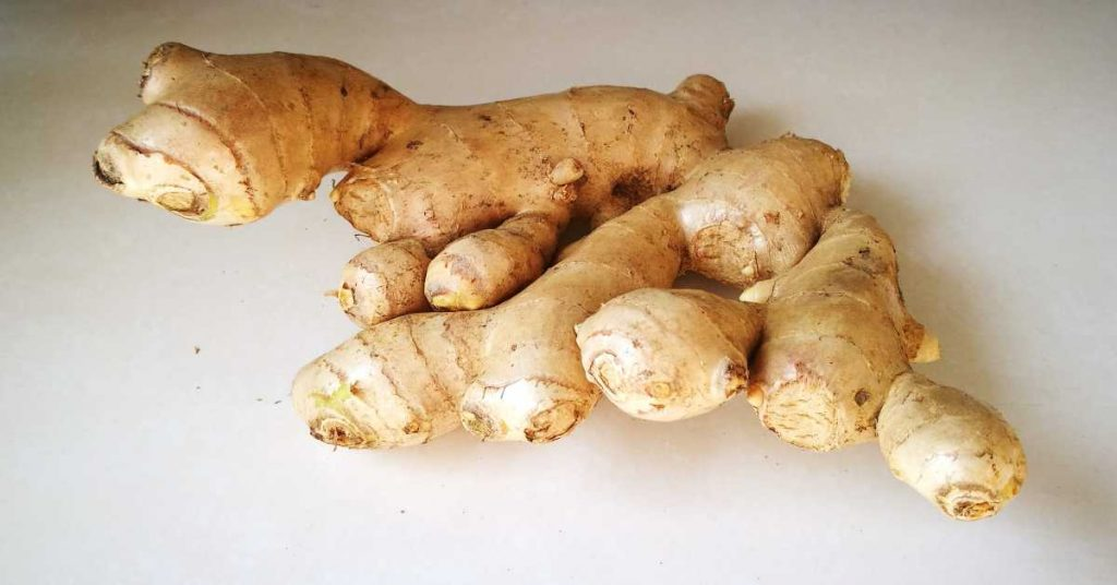 Healthy Herb and Spice- Ginger