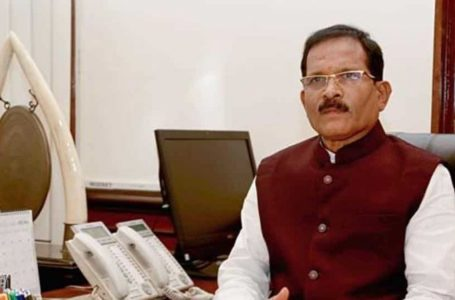 Defence Minister Rajnath Singh Says Accident-Hit Union Minister Shripad Naik Is Now Stable