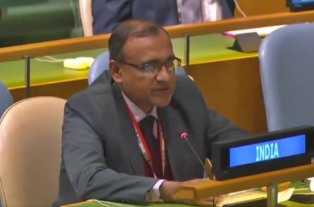 Existence of Foreign Terrorist in Conflict-Hit Nations Undermines Effort to Counter Terrorism: India at UNSC