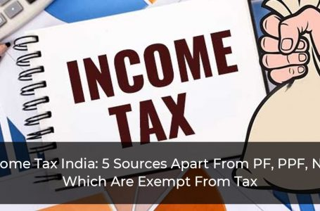 Income Tax India: 5 Sources Apart From PF, EPF, PPF, NPS Which Are Exempt From Tax