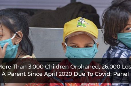 More Than 3,000 Children Orphaned, 26,000 Lost A Parent Since April 2020 Due To Covid: Panel